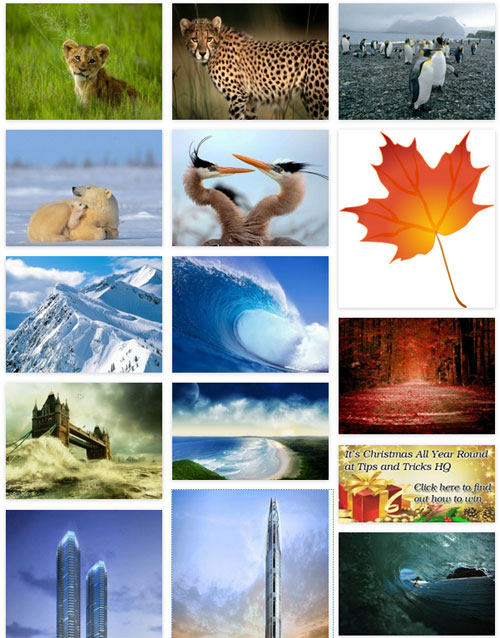 photo-seller-gallery-template-7-example
